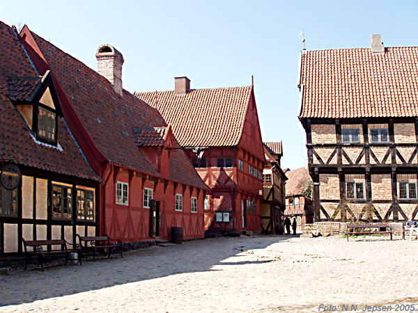 Aarhus Shore Excursions and City Tours